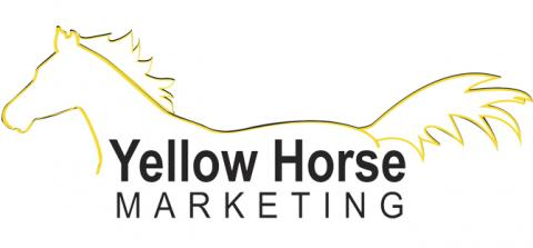 Sell Your Horse Faster & For More $$$ with our Sales Photos/Videos